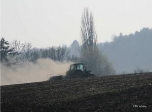 Im Märzen der Bauer-13.03.14-Zuschnitt
