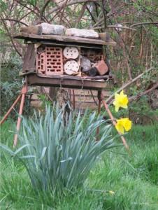 Wildbienenpension-1-01.04.14