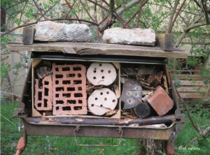 Wildbienenpension-2-01.04.14